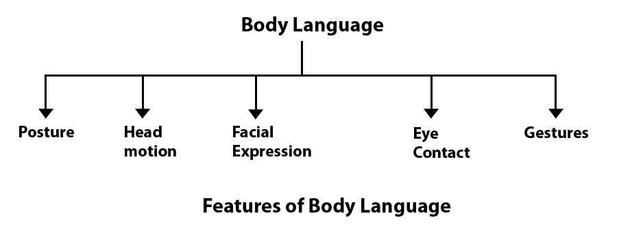 body language communication theory it
